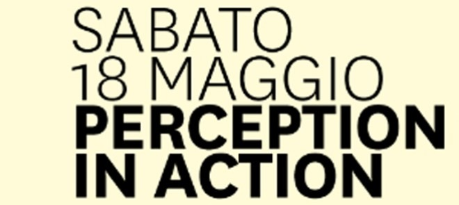 perception:in_action