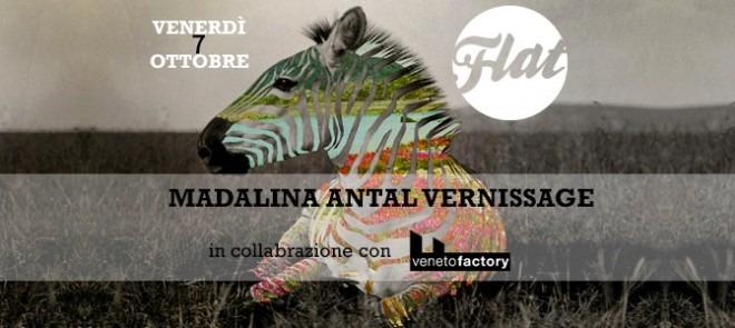 madalina_antal_flat