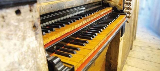 organistica