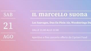 les_sauvages_duo_en_plein_air_woodstrings_duo